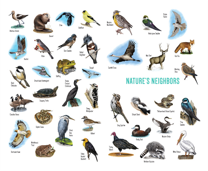 natures-neighbors